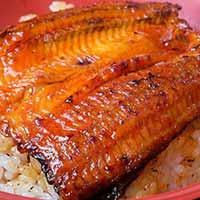 Unagi (grilled eel)